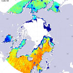 Sea surface salinity at the north pole
