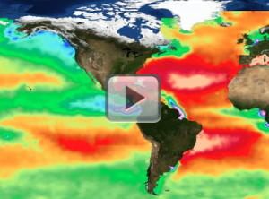 Global map of sea surface alkalinity